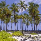 Puʻuhonua o Hōnaunau
